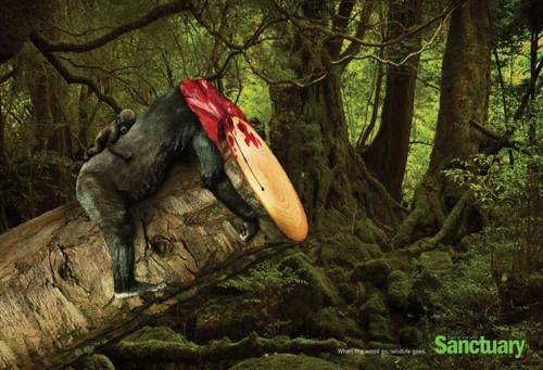 Publicité de «Sanctuary Asia» pour la lutte contre la déforestation dans le monde (campagne«Wildfire»)